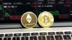 Crypto Trading For Beginners: What Key Tips Should You Know?